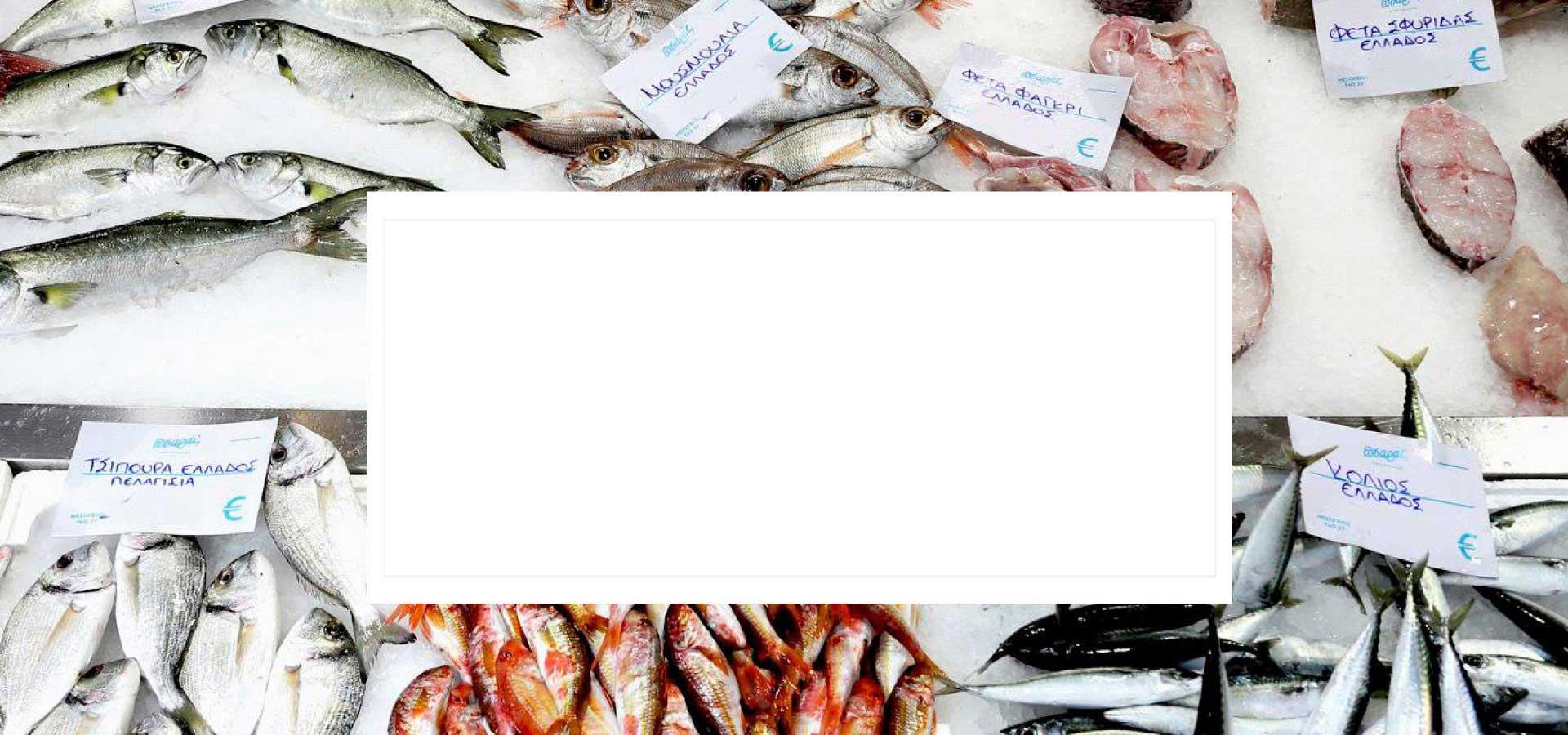 Φρέσκα ψάρια και θαλασσινά στη Θεσσαλονίκη